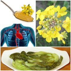 ist senf gesund gelber senf senf pflanze