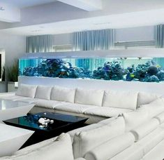 Saltwater Aquarium - Find incredible deals on Saltwater Aquarium and Saltwater Aquarium accessories. Let us show you how to save money on Saltwater Aquarium NOW! Aquarium Design, Home Aquarium, Aquarium Ideas, Aquarium In Wall, Aquarium Set, Marine Aquarium, Living Room Interior, Home Interior Design, Interior Designing