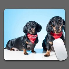 Two Datsun Dogs Mouse Pad Computer Gaming MousePads