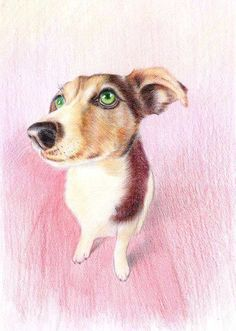 Custom Pet Portraits  Original Color Pencil Art  by PetPetPaint, $90.00