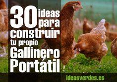 30 Ideas para construir un gallinero portatil en tu casa, elige entre todas estas ideas o coge ideas para poder hacer tu propio gallinero o chicken tractor