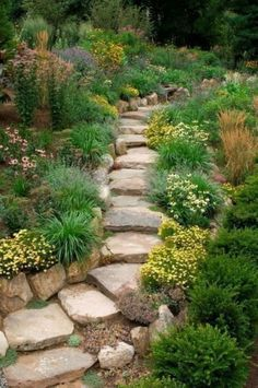 Adorable Rock Garden Ideas For Backyard - Rock gardens are characterized by u., 49 Adorable Rock Garden Ideas For Backyard - Rock gardens are characterized by u., 49 Adorable Rock Garden Ideas For Backyard - Rock gardens are characterized by u. Landscaping With Rocks, Landscaping Tips, Front Yard Landscaping, Hillside Landscaping, Outdoor Landscaping, Landscaping Software, Inexpensive Landscaping, Hillside Garden, Sloping Garden