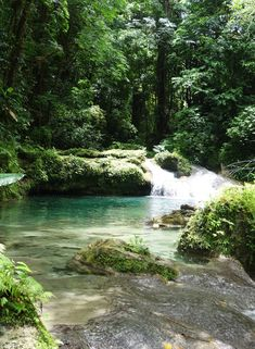 Reach Falls in Port Antonio, Jamaica