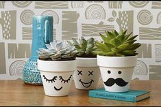 You gotta try these super fun ways to paint clay pots. These fun DIY painted flower pots are fun and creative the entire family will enjoy! Painted Plant Pots, Painted Flower Pots, Painted Pebbles, Flower Pot Crafts, Clay Pot Crafts, Art Crafts, Potted Plants, Indoor Plants, Decorated Flower Pots