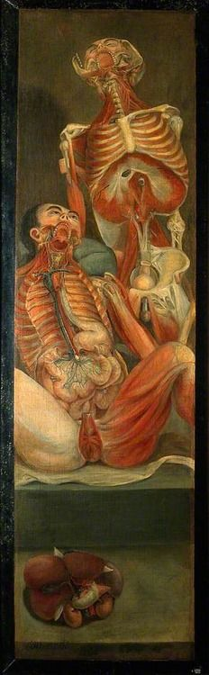 Two Dissected Men, One Seated, the Other Standing Behind, with a Separate Section of Viscera  by Jacques-Fabien Gautier D'Agoty