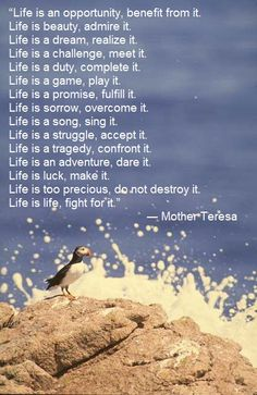 Life is poem or quote by Mother Teresa