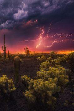 Desert Fireworks by Marc Adamus - Photo 125925717 - (Arizona) Beautiful Sky, Beautiful World, Beautiful Landscapes, Beautiful Places, Landscape Photography, Nature Photography, Lightning Photography, Arte Dope, Nature Sauvage