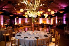 Floral Pinspotting and Paper Lanterns, along with pink uplighting helped to create a beautiful wedding at Rosine Hall. #weddinglighting, #pinspotting, #uplighting, #beyondld, #dallasarboretum, #bridalpartyshot, #receptionlighting