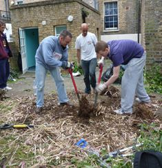 Homelessness charity PRHA's social enterprise offers grounds maintenance and biodiverse garden projects