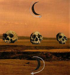 Head Case - Sarah Lukes, 2011