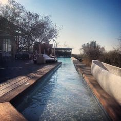 Lap pool Singita Lebombo