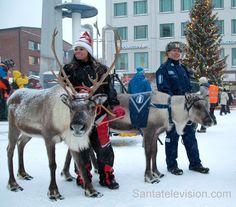 Poliisiporo Artturi ja televisiota rakastava poro Aatu Rovaniemen Lordiaukiolla