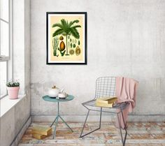 Betel palm Botanical Print Areca catechu Palm tree print