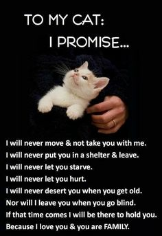 This is for cats and dogs and any animals I will have