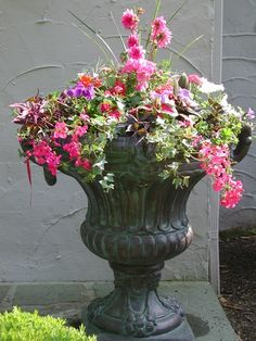 another site with ideas for outdoor containers...beautiful photography