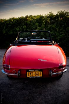 DDriven by Design: Alfa Romeo Duetto - Photography by Saam Gabbay for Petrolicious