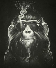 Illustration showcase for your inspiration - Smoke'em if you got'em