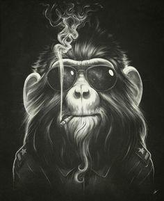 Che monkey