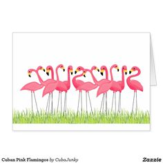 Cuban Pink Flamingos Card @zazzle #junkydotcom July 24 2016  12x