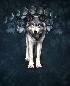 The Moon and Wolves | ... Moon, Meadow Moon, Blood Moon, Wort Moon, Blessing Moon, Fallow Moon