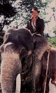 Indy astride Indian elephant