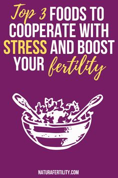 Fertility Foods Top 3 Foods To Cooperate With Stress and Boost Your Fertility, when to conceive, how Fertility Foods, Natural Fertility, How To Conceive, Trying To Conceive, Tips On Conceiving, Headache And Dizziness, Breastfeeding And Pumping, Coping Skills, Getting Pregnant