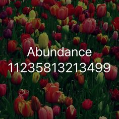 Money Magic, Healing Codes, Number Sequence, Switch Words, Acupuncture, Good To Know, Reiki, Abundance, Health Fitness