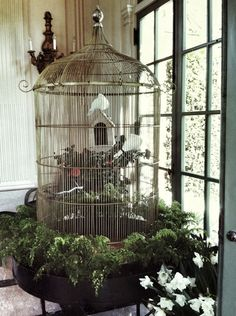 I like the bird, house and nest within the cage.
