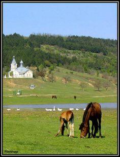 Summer in Moldova