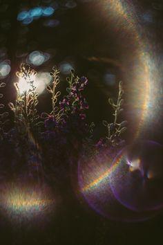 Sun Flare | Helios 44-2