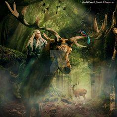 """Peace in the Forest"" by Quelle Elenath http://quelleelenath.deviantart.com/gallery/ ."
