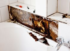 Untreated moisture in your #home can cost you in many ways. Here's how to handle the dampness. #homemaintenance