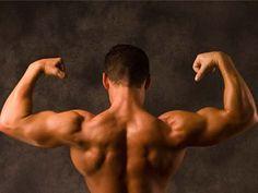 トンカットアリで男性ホルモンのテストステロンを高める