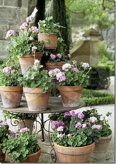 I like this layered look of geraniums in old terracotta pots on this stand.