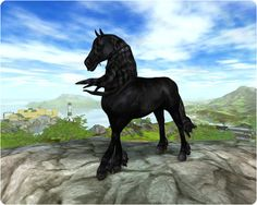 Friesian Horse Breed | Star Stable Horse Breeds: The Friesian Horse by CrystalHarmonyHeart