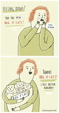 Bahahahaha Bag O' Cats!