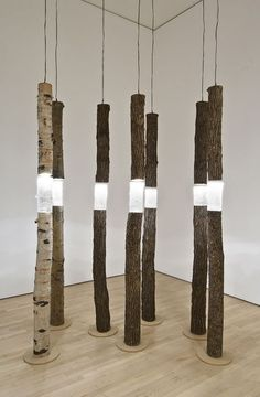 Arboreal Fragments, 2004 - tree segments, cast glass, plywood, halogen lights. By Ione Thorkelsson