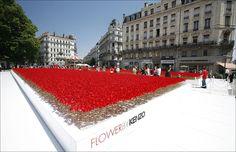 Après avoir fait un champ de coquelicots à à Paris, Moscou, Londres, ou encore Madrid, Kenzo va semer la passion du rouge à Toulouse.    Le pari de Kenzo pour faire découvrir sa fragrance fétiche : un champ éphémère de joie fleurie.    Les 4 et 5 septembre, c'est sur la Place du Capitole de Toulouse qu'écloront  200 000 coquelicots.    A l'issue de cet événement, tous ces coquelicots pourront être cueillis !  #kenzo
