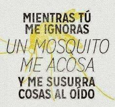 Mientras tu me ignoras, un mosquito me acosa y me susurra al oído.