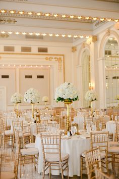 Gold and Ivory Decorated Reception Space