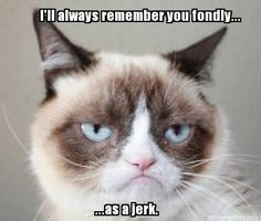 You made quite an impression. Grumpy Cat Quotes #GrumpyCat #Meme #Humor