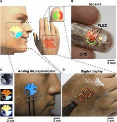 薄さはわずか3マイクロメートルと人間の皮膚よりも薄く、柔軟で人間の肌に貼れる有機LEDを、東京大学大学院工学系研究科 染谷隆夫教授・横田知之講師らの研究グループが発表しました。Ultrafle
