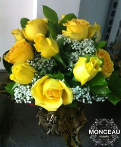 Burbuja de 15 rosas 40€