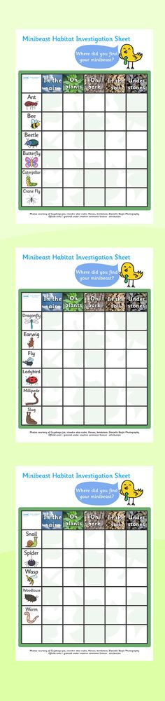 Habitats- Minibeasts habitats investigation worksheets