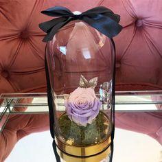 Glass Vase, Flowers, Home Decor, Decoration Home, Room Decor, Royal Icing Flowers, Home Interior Design, Flower, Florals