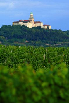 The Archabbey and vineyard of Pannonhalma #Hungary