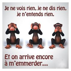 Best Quotes, Funny Quotes, French Quotes, Positive Attitude, Positive Affirmations, Funny Images, Proverbs, Cool Words, Decir No
