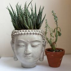 Buddha Head Planter #4 - cement plant pot, Concrete Design