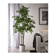 FEJKA Artificial potted plant IKEA Lifelike artificial plant that remains looking fresh year after year. 59.99