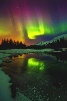 #AuroraDreamscape | #vividessentials